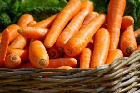 carrot ray peat