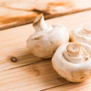 mushrooms ray peat