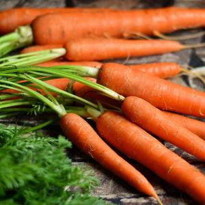 Thyroid-diet-ray-peat-carrots